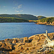 Acadia  Art Print