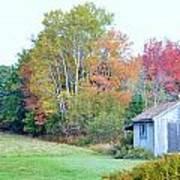 Acadia Autumn 2014 Art Print