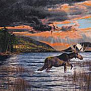 Acadia Feast Art Print by Brent Ander