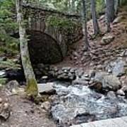 Acadia National Park Carriage Road Bridge Art Print