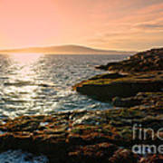 Acadia National Park Art Print by Olivier Le Queinec