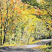 Acorn Lake 002 Art Print