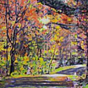 Acorn Lake Series 001 Art Print