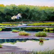 Across Duck Creek Art Print by Karol Wyckoff