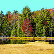 Adirondack Color Iv Art Print