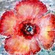 Adobe Poppy Art Print