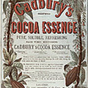 Advertisement For Cadburs Cocoa Essence From The Graphic Art Print