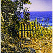 Aegean View Art Print