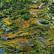 Aerial Of A Wetland, Over Northern Art Print
