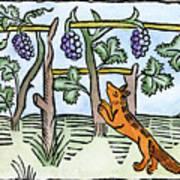 Aesop The Fox & The Grapes Art Print