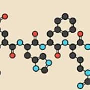 Afamelanotide Drug Molecule Art Print
