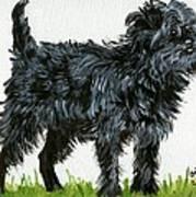 Affenpinscher Dog Art Print