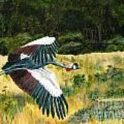African Crowned Crane Painting Art Print