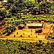 African Land Art Print