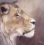 African Lioness On Alert Art Print