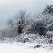 after Snow Storm Art Print