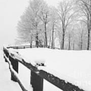 After The Winter Storm Art Print