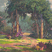 Afternoon Arbor Print by Michael Humphries