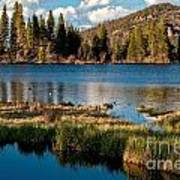 Afternoon At Sprague Lake Art Print