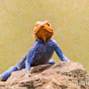 Agama Lizard On Rock Art Print