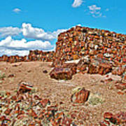Agate House In Petrified Forest National Park-arizona  Art Print