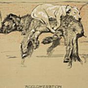 Agglomeration Art Print