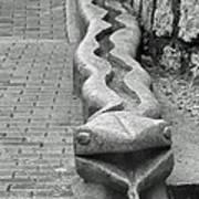 Aguas Calientes Snake Art Print