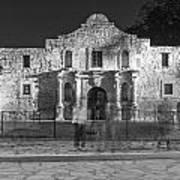 Alamo In Texas  Art Print