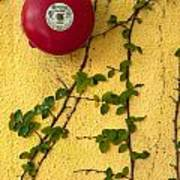 Alarm Bell And Vines Yellow Wall Art Print