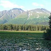 Alaska Lake 2 Art Print
