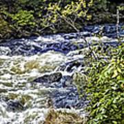 Alaskan Creek - Ketchikan Art Print
