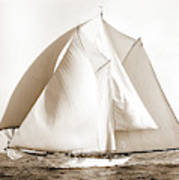 Alcaea, Alcaea Schooner, Yachts Art Print