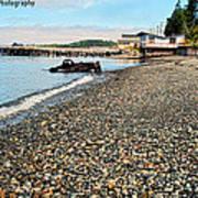 Alert Bay Beach Scape Art Print