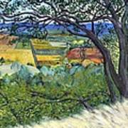 Alexander Valley Vinyards Art Print