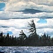 Algonquin Kawawaymog Wendy's Tree Art Print