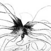 Alien Art Print by Anne Gilbert