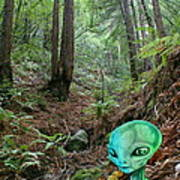 Alien In Redwood Forest Art Print