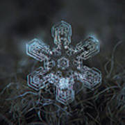 Snowflake Photo - Alioth Art Print