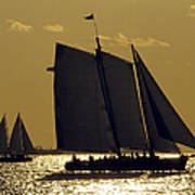 All Sails Sunset In Key West Art Print