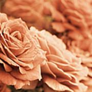 All The Orange Roses Art Print