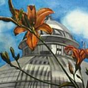 Allan Garden With Daylilies Art Print