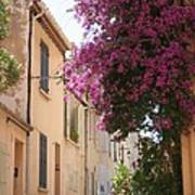 Alley With Bougainvillea - Provence Art Print