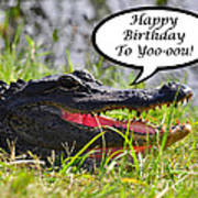 Alligator Birthday Card Art Print