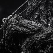 Alligator Tree Art Print