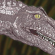 Allosaurus Art Print