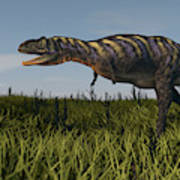 Alluring Aucasaurus In Grassland Art Print
