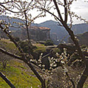 Almond Tree And Monastery   #9815 Art Print