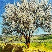 Almond Tree Art Print