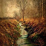 Along The Canal Art Print