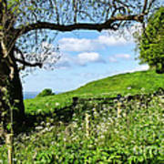 Along The Coastal Path - Lyme Regis 2 Art Print